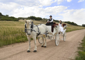 Lovely bride setting in a white carriage with red velvet seating interior, being pulled by a white horse.