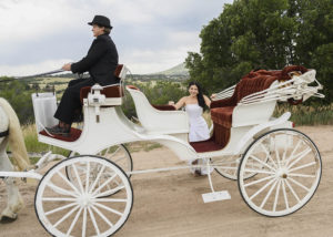 Lovely bride standing behind a white carriage with red velvet seating interior, being pulled by two white horses.