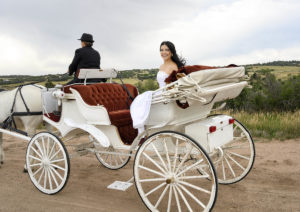 Lovely bride setting in a white carriage with red velvet seating interior, being pulled by two white horses.