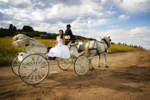 Lovely bride sitting in a white carriage with red velvet seating interior, being pulled by two white horses.