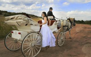 Lovely bride climbing aboard a white carriage with red velvet seating interior, being pulled by two white horses.