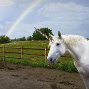 a whiite unicorn under a rainbow
