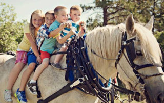4 children sitting on a white horse.