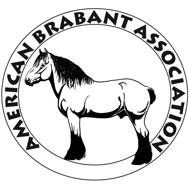 America Brabant Association logo