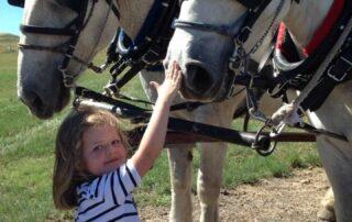 Little girl petting a horse