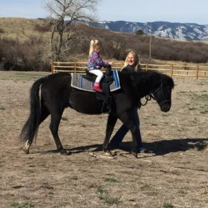 Young girl riding a black pony