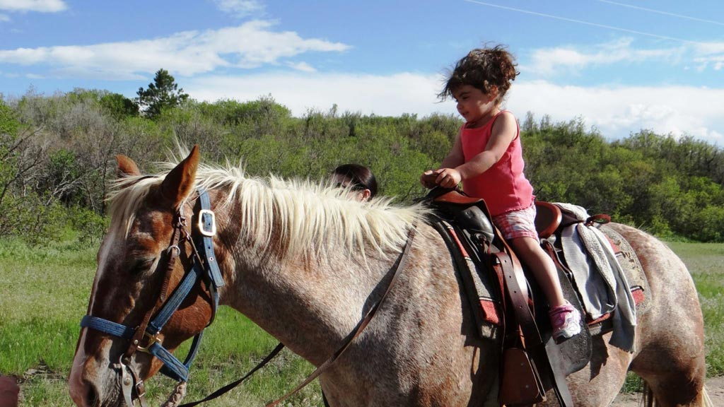 Young girl riding on a horse